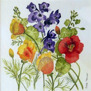 delphinium and nasturtiums