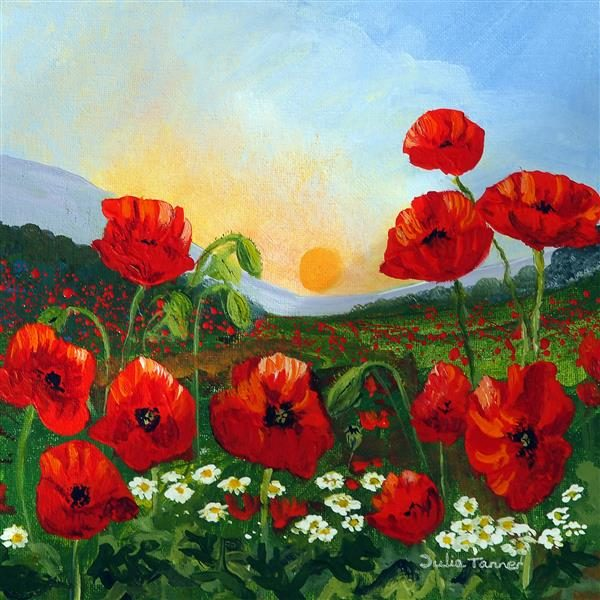 Poppies at sunset Coaster